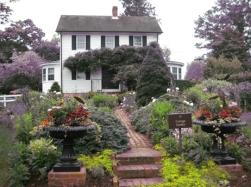 Speight Cottage Garden (2)