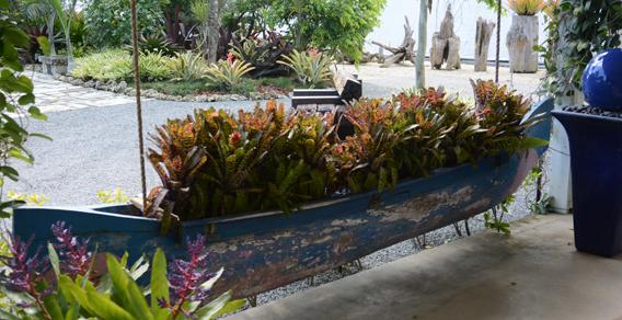 clarke-bullis-bromeliad-boat