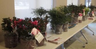 McCormick BRIT plant donations.jpg