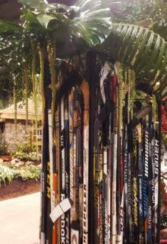 Bannister Hockey sticks eh Canada Blooms