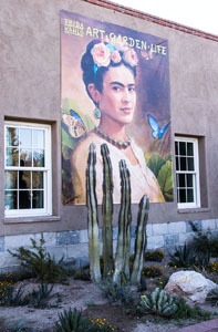 Wynja Frida entry banner_6418.jpg