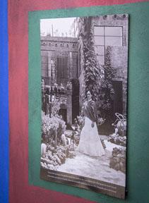 Wynja Frida in her garden_6499.jpg