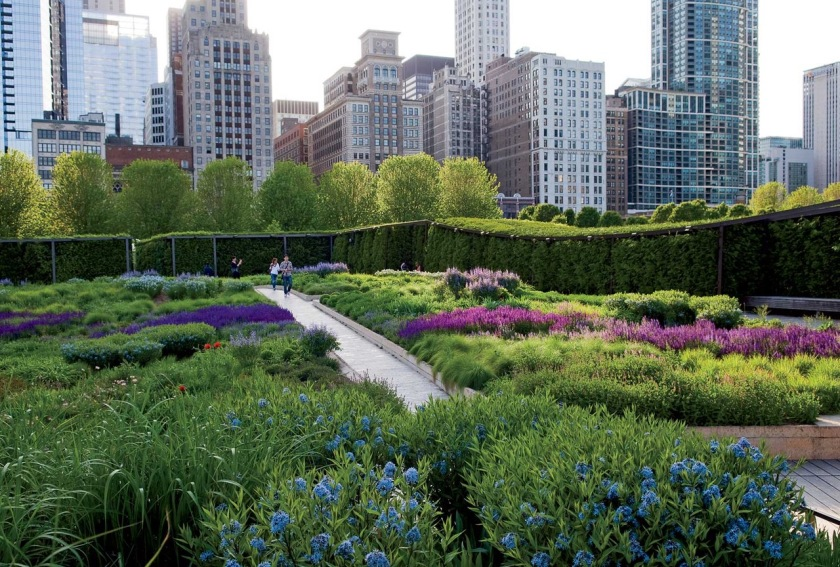5-credit-The-Lurie-Garden.jpg_CTTabloid_08-03-2014_C_SUN_4F6ULP