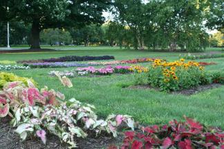 OSU Trial Gardens (3)